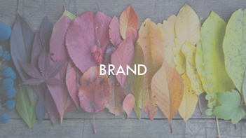Brand - simplicity takes bravery