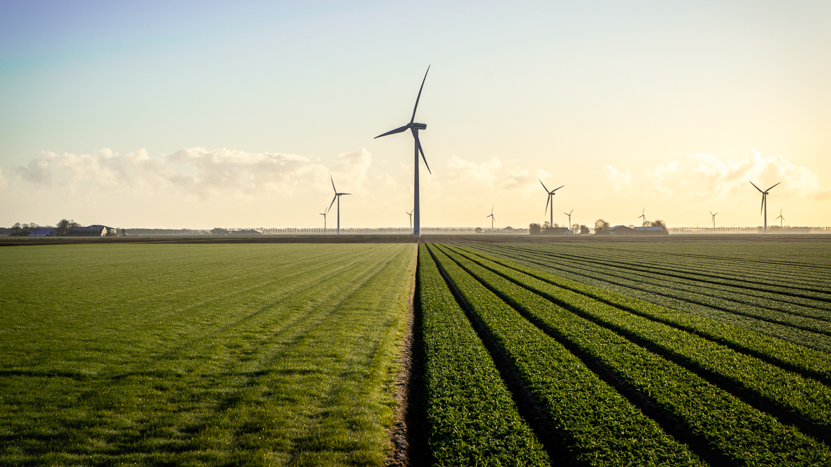 A better balance of carrot and stick is needed for companies to reach net zero